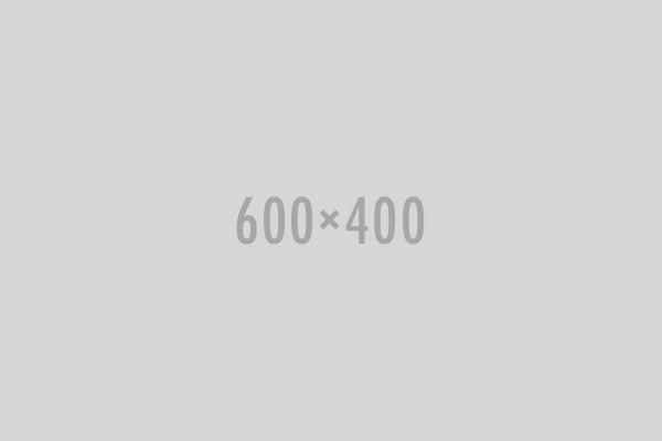 widget-gallery01