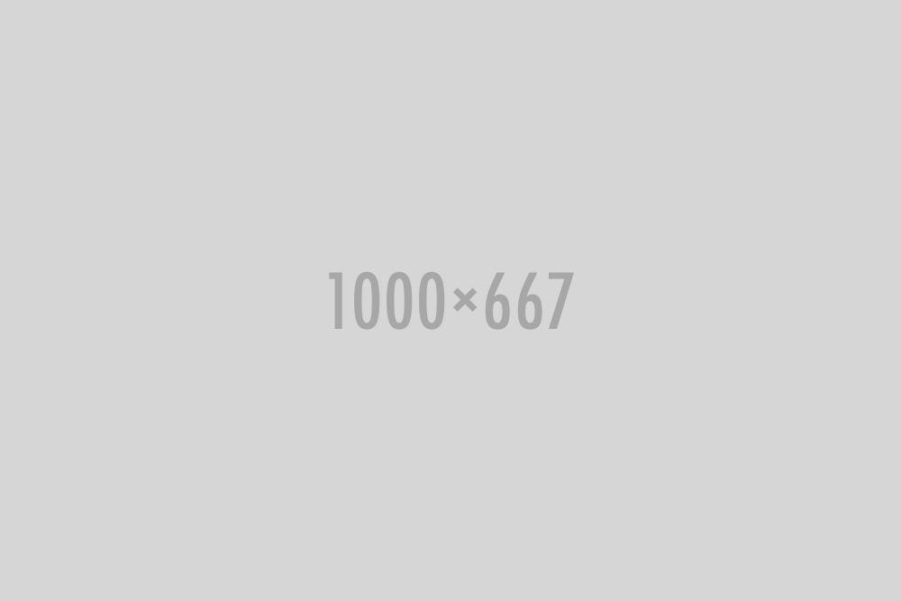 gallery-set16-image01
