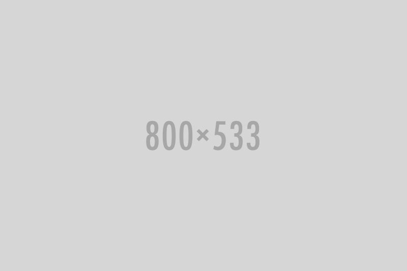 gallery-single-image87