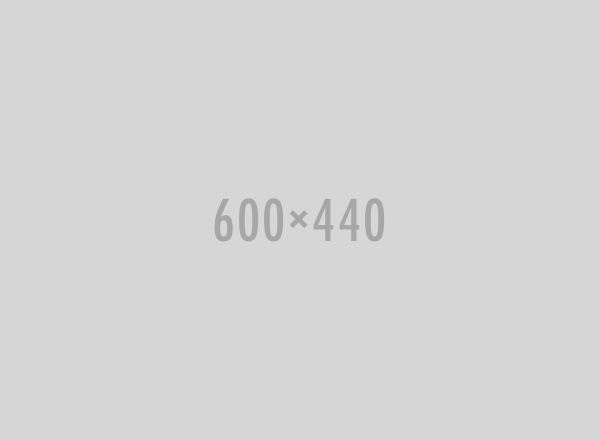 widget-gallery08